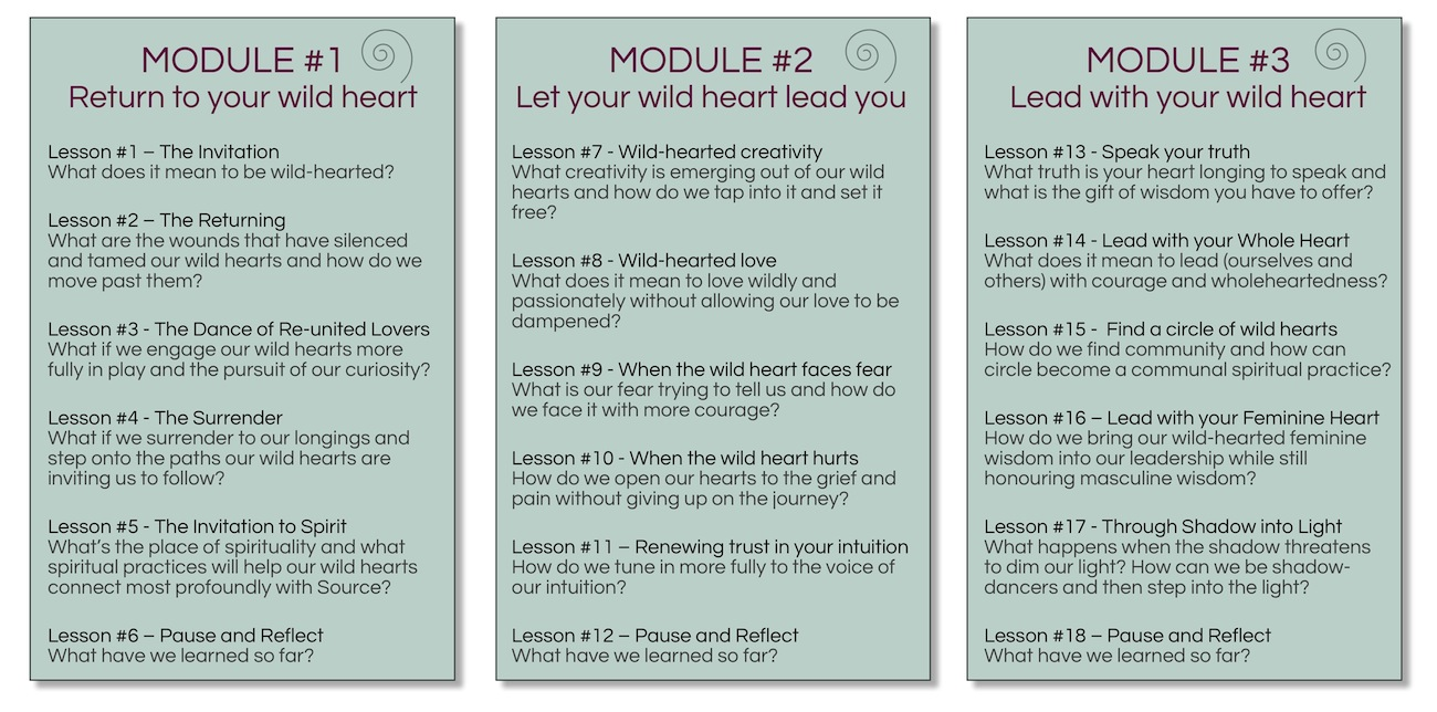 lead with your wild heart - modules