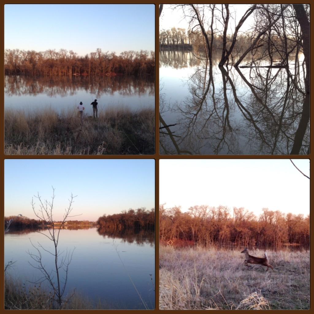 riverbank wandering