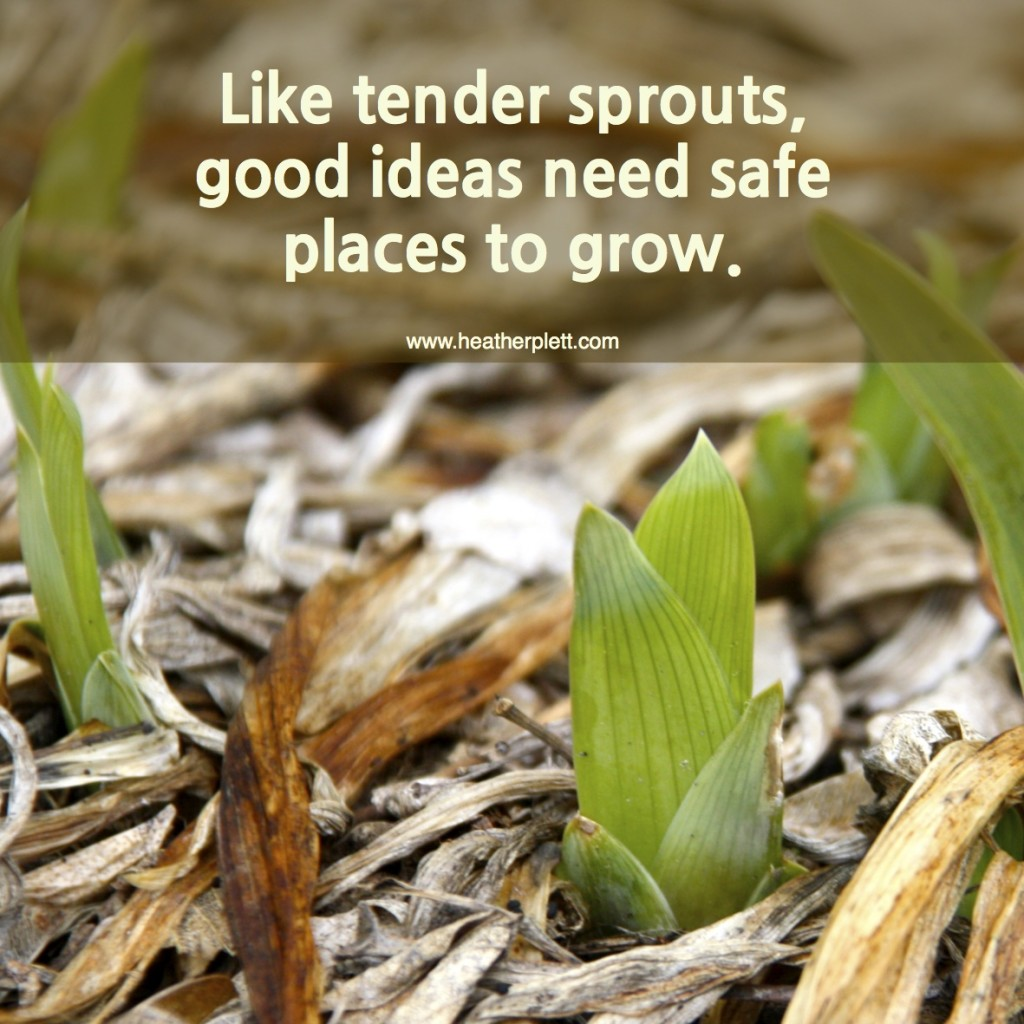 tender sprouts