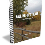 Fall Reflections - mock cover